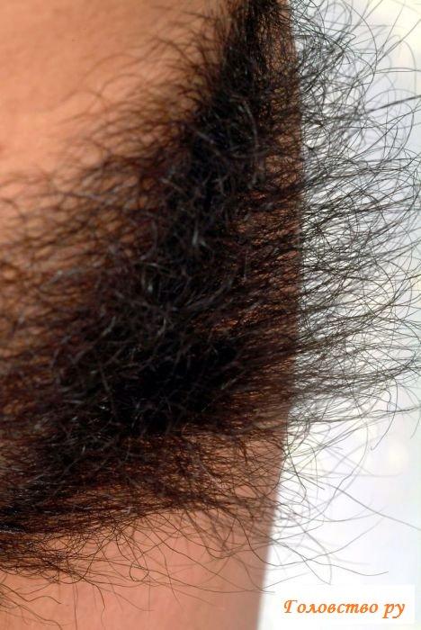 Прекрасные вагины девок с волосатым лобком